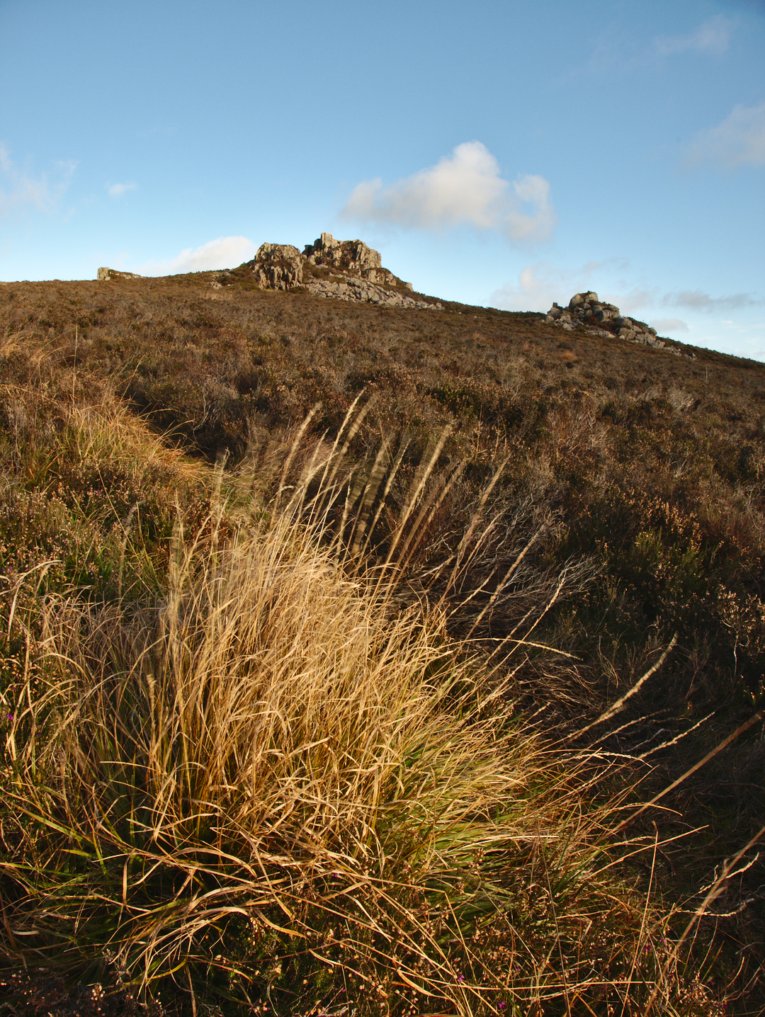 Caer Gribin, The Fourth Peak of Yr Eifl Range